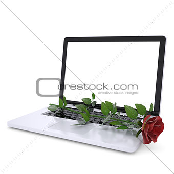 Red rose on a laptop
