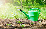green watering can in garden on ground