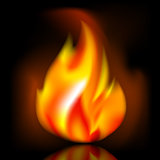 Fire, bright flame on dark background