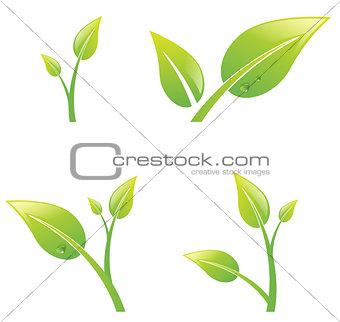 Green Sprout Leaf Set
