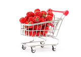 Ripe Red strawberries in shopping cart