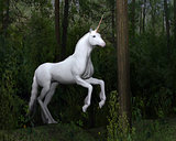Stately White Unicorn