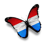 Luxembourg flag butterfly, isolated on white