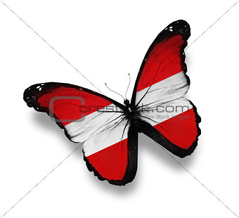 Austrian flag butterfly, isolated on white