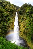 Rainbow over Akaka Falls