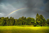 Rainbow above green trees