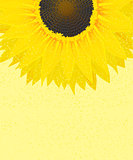 Decorative sunflower graphic
