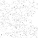 Floral background outline