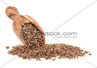 Aniseed Spice