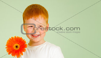 Adorable redheaded boy with orange African daisy on green backgr