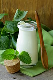 organic dairy products (yogurt, sour cream) in a glass jar