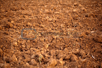 Close up Soil