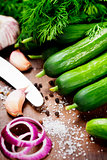 preparing preserves of pickled cucumbers