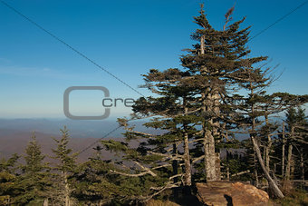 Appalachian Mountains from Mount Mitchell, the highest point in