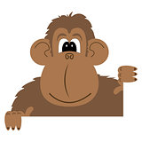 cartoon illustration of a monkey