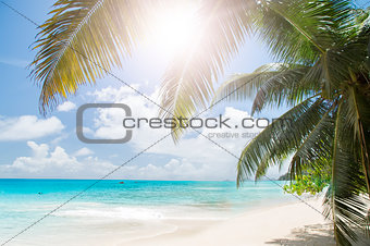 White coral beach sand and azure ocean. Seychelles islands.
