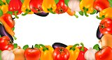 The big colorful group of vegetables. Vector.
