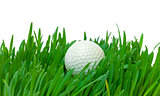 White golf ball in the long grass