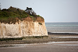 White Cliff at Pegwell Bay in Kent