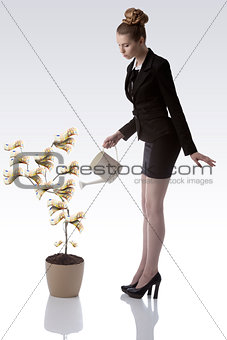 cute business woman watering euro money plant
