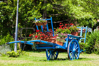 cart with flowers, Saint-Julien-en-Beauchen, Provence, France