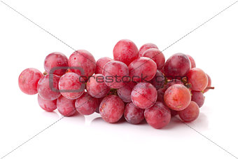 Fresh red grapes branch