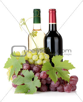 Two wine bottles and grapes