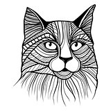 Vector illustration of cat head