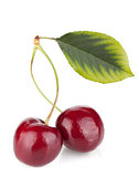 Two ripe cherries with leaf