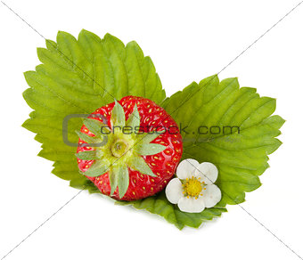 Strawberry fruit with flower and green leaves