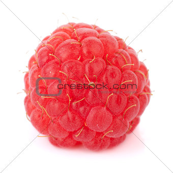 Fresh raspberry macro
