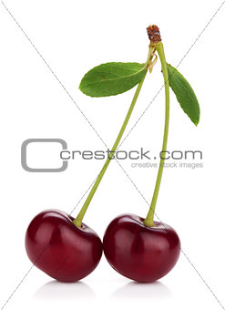 Two ripe cherries