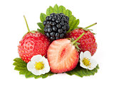 Strawberry and blackberry fruits