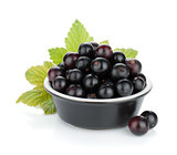 Black currant in small bowl