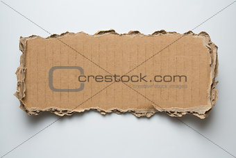 cardboard torn piece