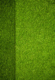miniature golf field top view background