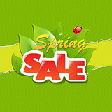 Green Torn Paper Borders And Spring Sale Banner