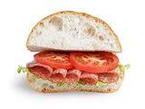 italian sandwich with salami