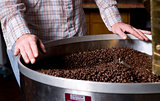 Roasters Hands on Hopper Cooling the Coffee Beans