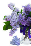Mixed Lilac in vase