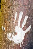 Human handprint