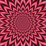 Pink and Crimson Star