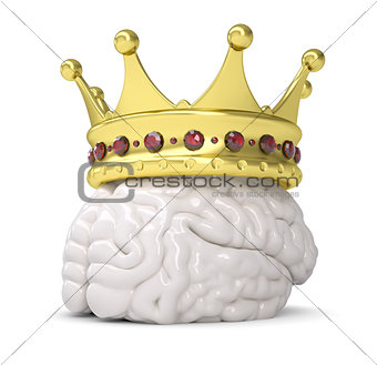 Crown on the brain