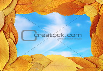 abstract frame of golden leaves