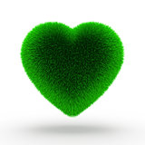 Heart green grass