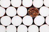 Filter cigarettes background