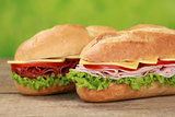 Sub Sandwiches with salami and ham
