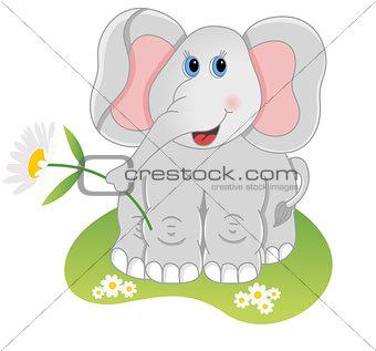 Elephant holding flower
