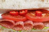 spicy italian sandwich with salami