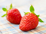 Fresh Sweet Strawberries on the Table Cloth